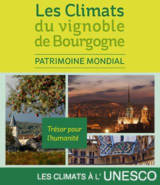 Les Climats de Bourgogne entrent au Patrimoine Mondial de l'UNESCO !